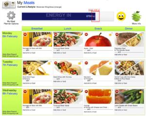 custom software design client Get Vibrant! meal plans