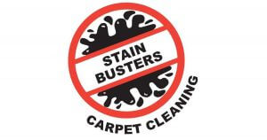 Custom software design client Stain busters